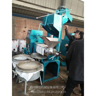 茶籽低温冷榨机 全自动螺旋榨油机 花生冷榨榨油机的好处