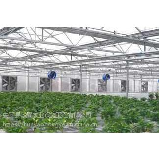 移动苗床厂家/大棚育苗栽培床生产供应商