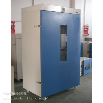 立式鼓风干燥箱DHG-9625A