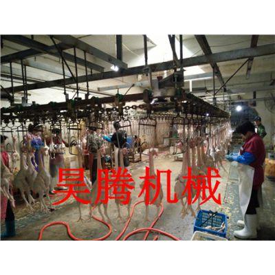 蛋鸡屠宰流水线制造商长期生产
