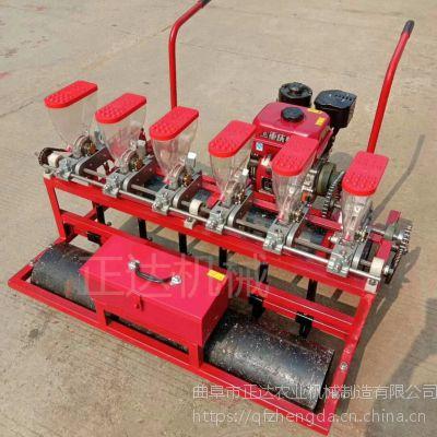 可随意加减下种篓汽油播种机 手推款适合大棚种植播种机
