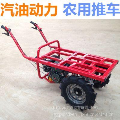农用工具车 运输化肥的三轮平板车 奔力SL-K06