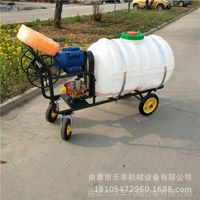 操作简单汽油手推式果树打药机 定做多规格农田灭虫打药机价格