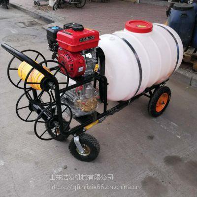 果园麦田专用打药泵 环保除尘喷雾器
