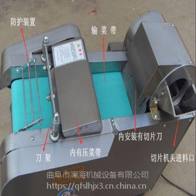 食品厂用多功能柠檬山楂切片机 双头不锈钢电动山药切片切菜机