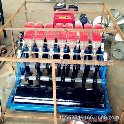 家用小型电动油菜精播机 菠菜香菜油菜单粒播种机 新款农用种植机