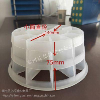 生物塔填料 净化塔PP材质填料 厂家亿恒塑料