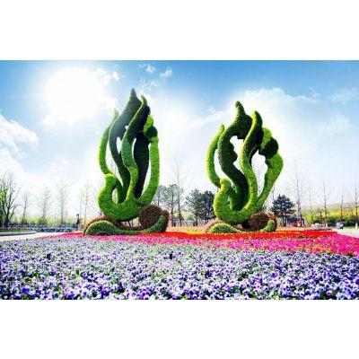 百坊源合作社设计制作五色草造型 立体花坛 植物绿雕 提供优质五色草