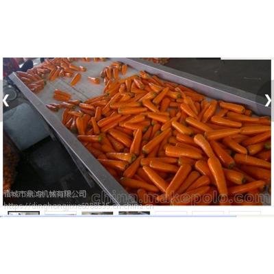 全自动不锈钢胡萝卜清洗机 鼎鸿制造