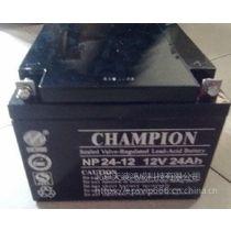 冠军蓄电池12V24AH直流屏电瓶UPS电池NP24-12消防应急蓄电池