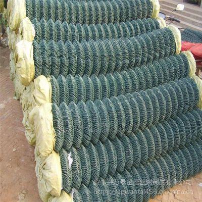 绿色包塑勾花网 浸塑活络网 PVC防锈球场网