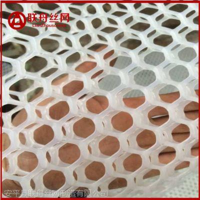 【联舟】现货小孔塑料平网 塑料筛网 隔离网