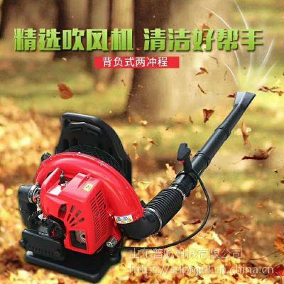 杭州森林消防风力灭火机 背负式路面树叶吹风机 普航手提式汽油吹雪机