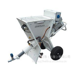 原装供应GIEMA混合泵-赫尔纳(大连)公司