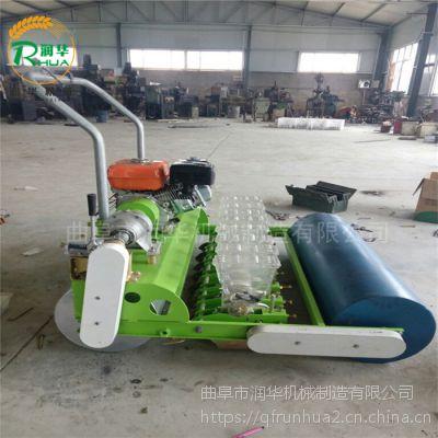 带移动轮的蔬菜精播机 下种量1-6粒随意调节菠菜种植机