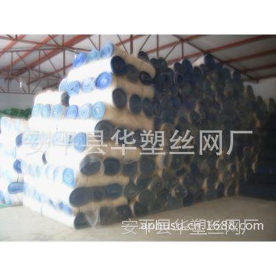 【现货供应】塑料防虫网、防虫网、蔬菜大棚防虫网