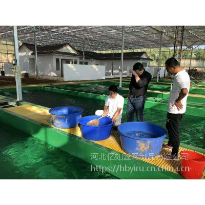 鱼厂食品级玻璃钢格栅/走道地沟格栅板