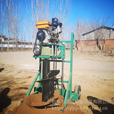 佳鑫 大直径植树挖坑机 柴油手推打洞机 钻眼机