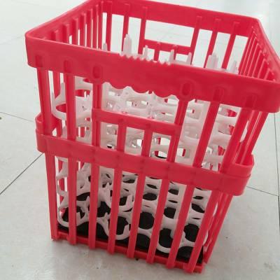 运输鸡种蛋筐无味环保种蛋箱注塑鸡蛋框周转箱