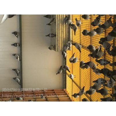 任丘养鸽专用玻璃钢网格漏粪板厂家