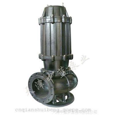铸铁高效无堵塞污水泵