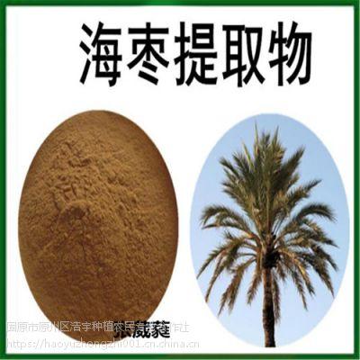 固原浩宇种植供应 海枣提取物 6:1 速溶粉 全球发货 海枣浓缩液