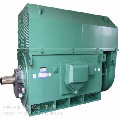 供应优质北京东方华盛高压三相异步电动机YKK5603-10 10KV 500KW IP44