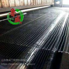 山东鲁威土工格栅 钢塑土工格栅 塑料土工格栅 质量好耐使用