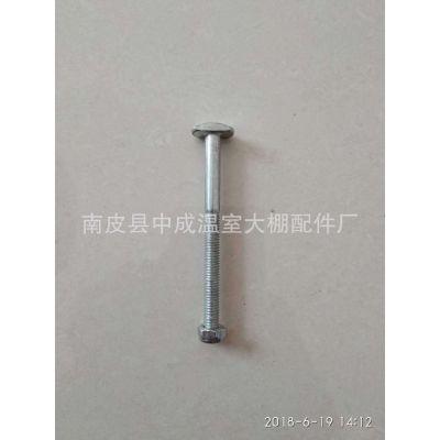 供应温室大棚配件镀锌螺栓 温室遮阳全套配件驱动卡配套T型螺丝
