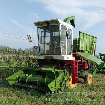 浙江玉米秸秆自卸料仓回收机 大型地滚刀式青储机厂家