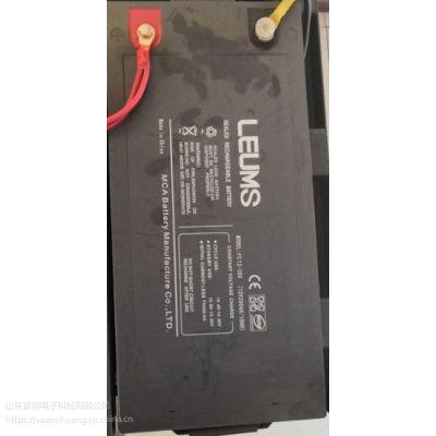 原装LEUMS蓄电池报价型号网络直销最新报价大全