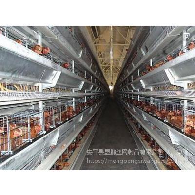 小规模养鸡专用笼具 热镀锌肉鸡笼立式 养殖配件