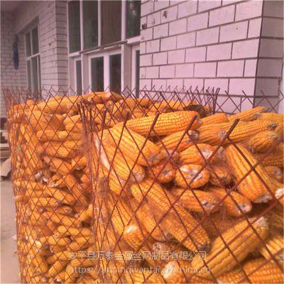 圈玉米网厂家 德州圈玉米钢板网 菱形拉伸网现货