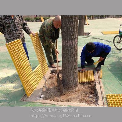 市政树穴篦子25mm厚度绿化专用树篦子 河北华强