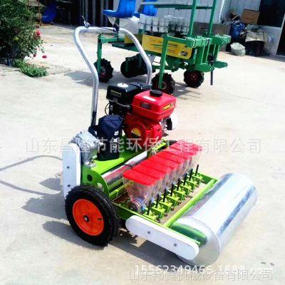 新型省人工蔬菜播种机 手推式菜籽精密播种机 牵引式蔬菜精播机
