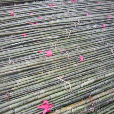 大量供应甘肃武威、张掖绑扶枸杞树苗用的3米4米细竹杆