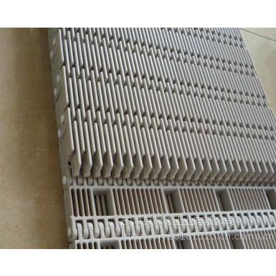 杀菌线塑料网带流水线可定制网带,食品专用网带