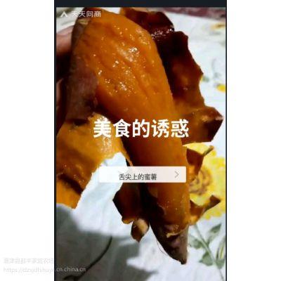 山东蜜薯糖心红薯红心烟薯25 富硒烤地瓜农家自种沙地新鲜番薯
