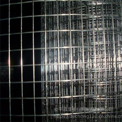 安平泽崇PVC电焊网 河北喷塑电焊网厂家 徐州碰焊网厂家