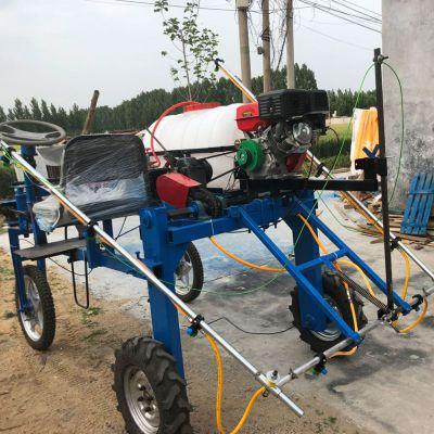 启航高压远程果树喷雾器 三轮自走式风送打药机 自走式喷雾机图片