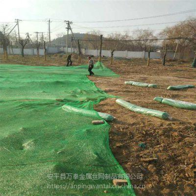 建筑用盖土网 防尘网的规格 抗老化遮阳网