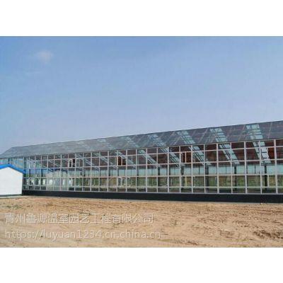 双12来临玻璃温室大棚降价***低防集露双层中空565加工中心