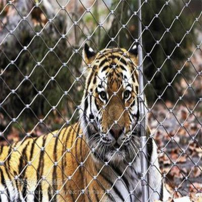 不锈钢绳网,304不锈钢动物安全防护网,安全防护网厂