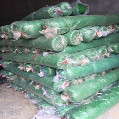 建筑工程土面盖土网 盖土绿色卷网 工地防尘绿网