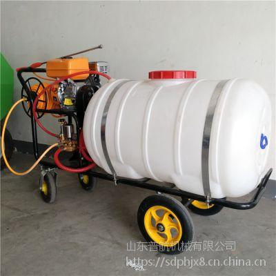 果树打药机园林喷雾机 普航自走式农药喷洒机 手推式果园打药机