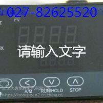 供应热销电厂XST-262 温控仪