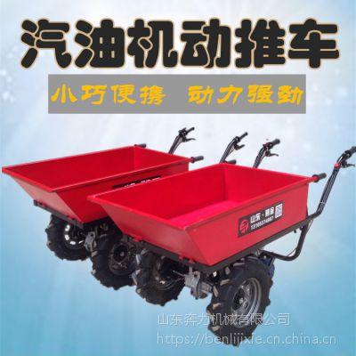 荔枝园林摘果运输车 小型手推爬坡斗车 奔力 SL-BL-1