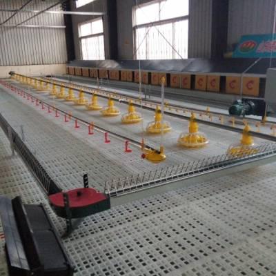 鸡鸭用的塑料漏粪板 塑料漏粪板供应商 双筋塑料漏粪板