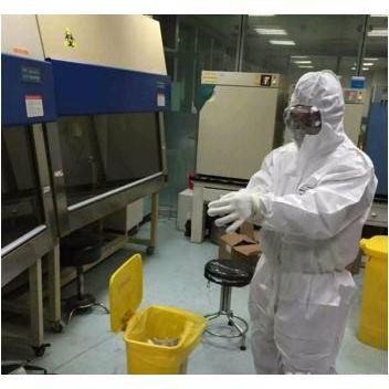 维保服务 > 生物安全柜高效过滤器更换