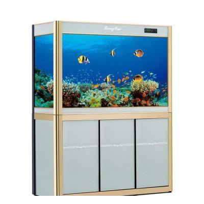 萧山观赏鱼缸定制-萧山观赏鱼缸-可丽水族(查看)